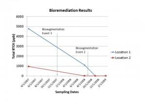 fast BTEX bioremediation